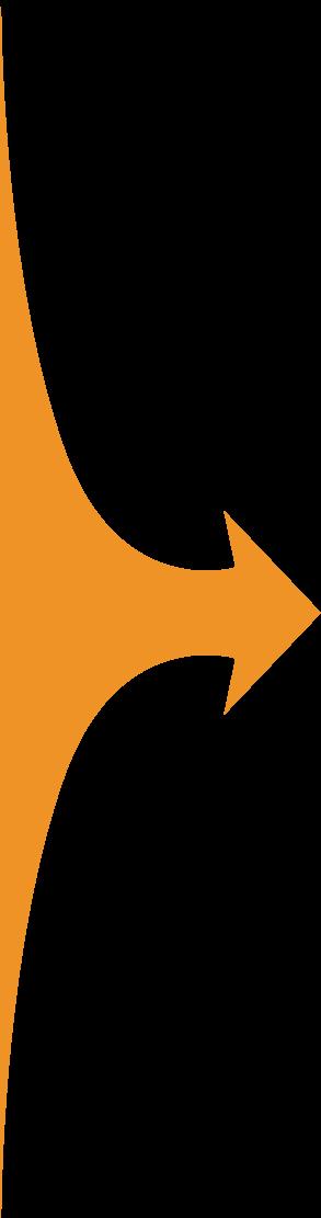 campaign-arrow